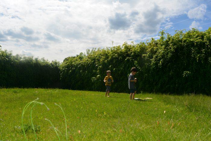 Betovering in de tuin